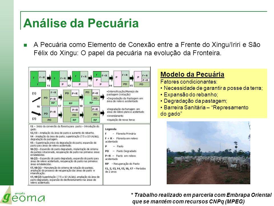 Análise da Pecuária A Pecuária como Elemento de Conexão entre a Frente do Xingu/Iriri e São Félix do Xingu: O papel da pecuária na evolução da Frontei