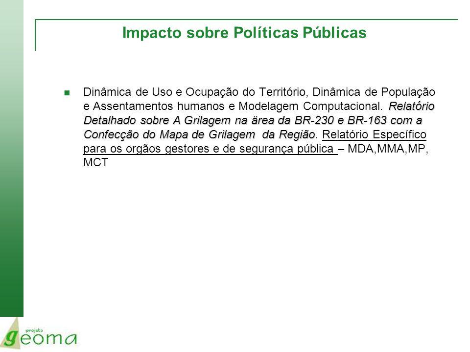 Impacto sobre Políticas Públicas Relatório Detalhado sobre A Grilagem na ärea da BR-230 e BR-163 com a Confecção do Mapa de Grilagem da Região Dinâmic