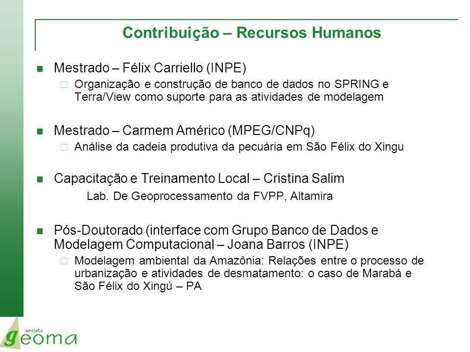 Contribuição – Recursos Humanos Mestrado – Félix Carriello (INPE) Organização e construção de banco de dados no SPRING e Terra/View como suporte para