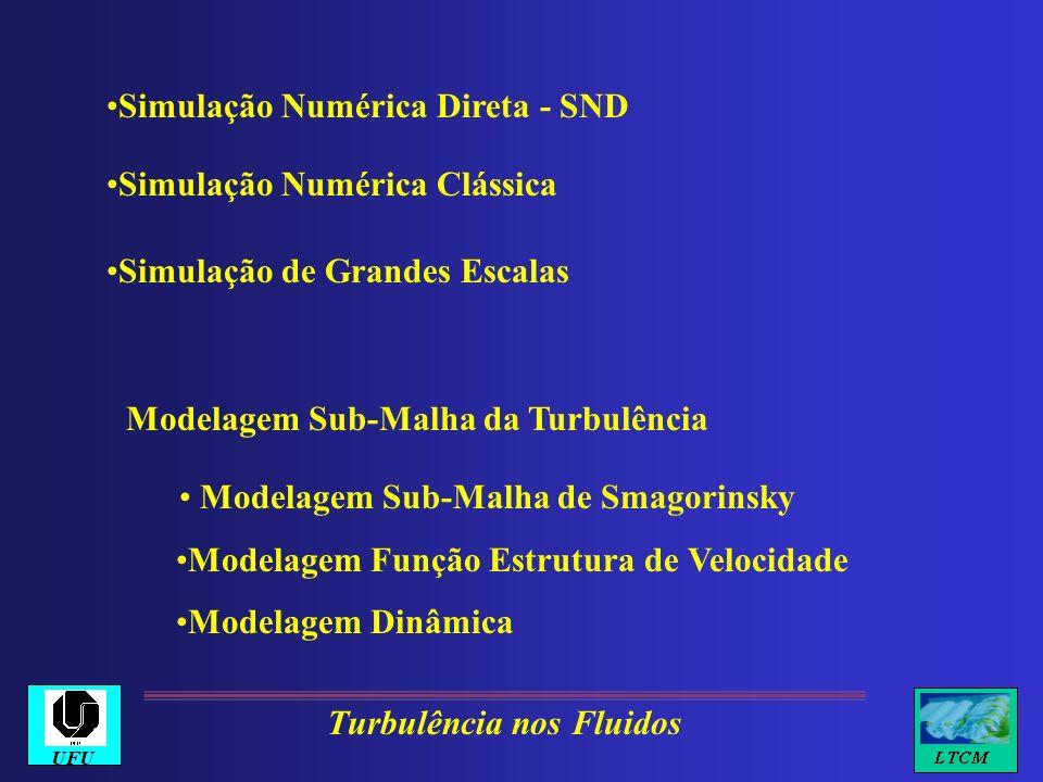 Modelagem Sub-Malha da Turbulência Modelagem Sub-Malha de Smagorinsky Modelagem Função Estrutura de Velocidade Modelagem Dinâmica Turbulência nos Flui