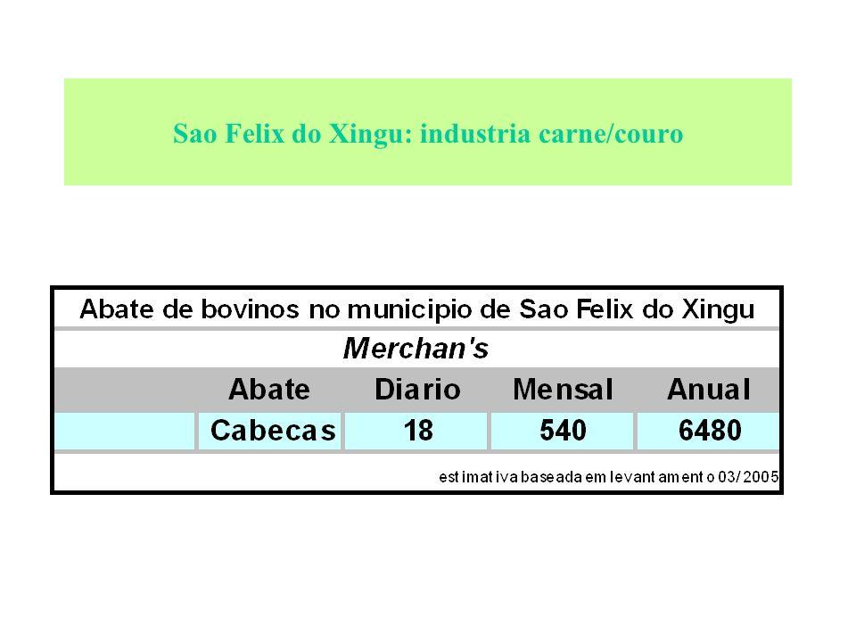 Sao Felix do Xingu: industria carne/couro El:mentos gerais: Principal Cliente: o pequeno produtor local. Gado: fêmea, de raça nelore/mestiço. Produtos