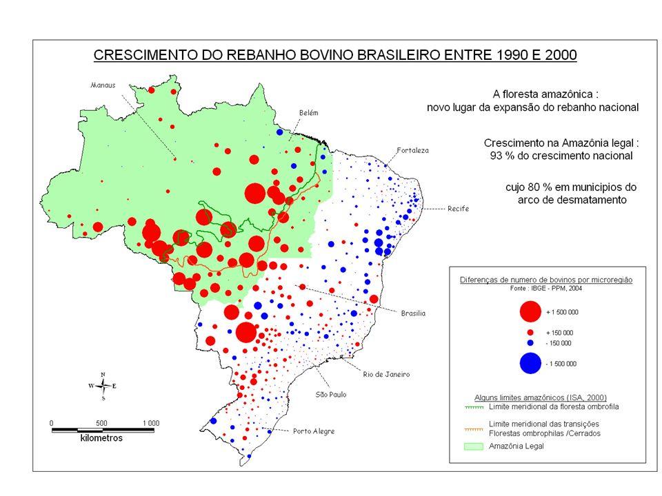 DISTRIBUICAO DO REBANHO BOVINO EM 2003 Sistematizacao: R. Poccard (20005)