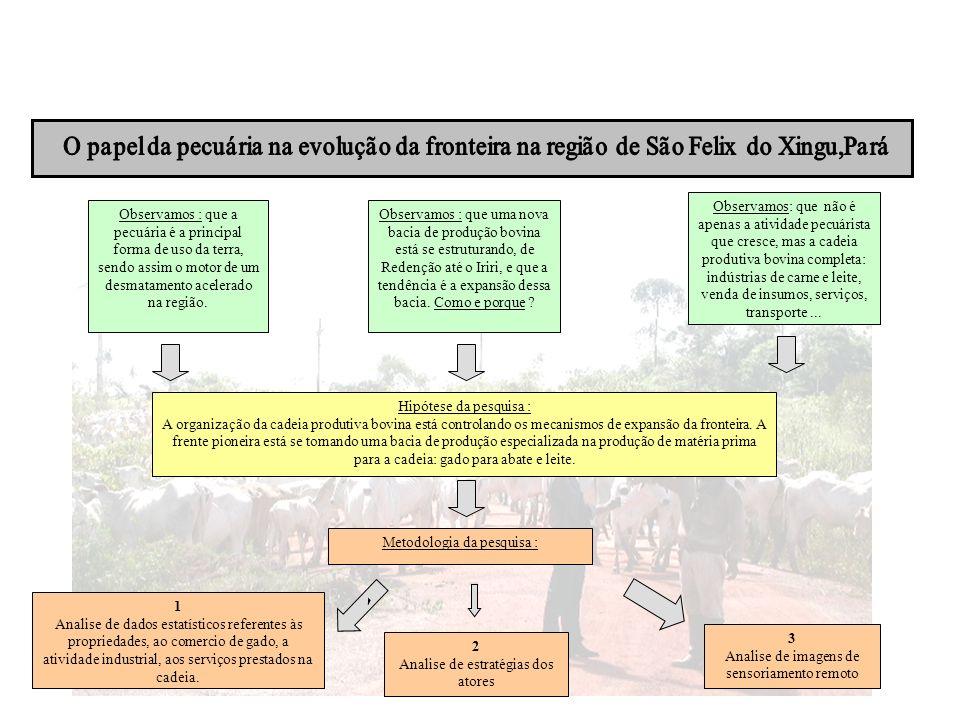 Sao Felix do Xingu: industria carne/couro El:mentos gerais: Principal Cliente: o pequeno produtor local.