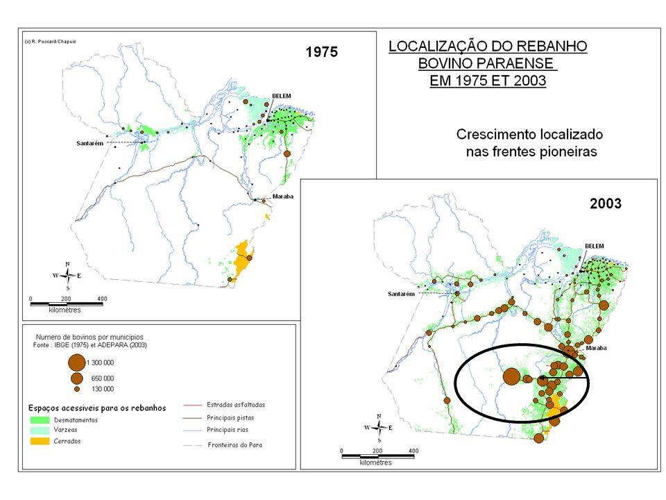 Sao Felix do Xingu: industria carne/couro