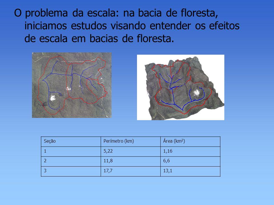 O problema da escala: na bacia de floresta, iniciamos estudos visando entender os efeitos de escala em bacias de floresta. SeçãoPerímetro (km)Área (km