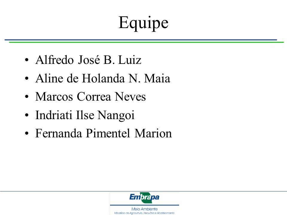 Equipe Alfredo José B. Luiz Aline de Holanda N. Maia Marcos Correa Neves Indriati Ilse Nangoi Fernanda Pimentel Marion