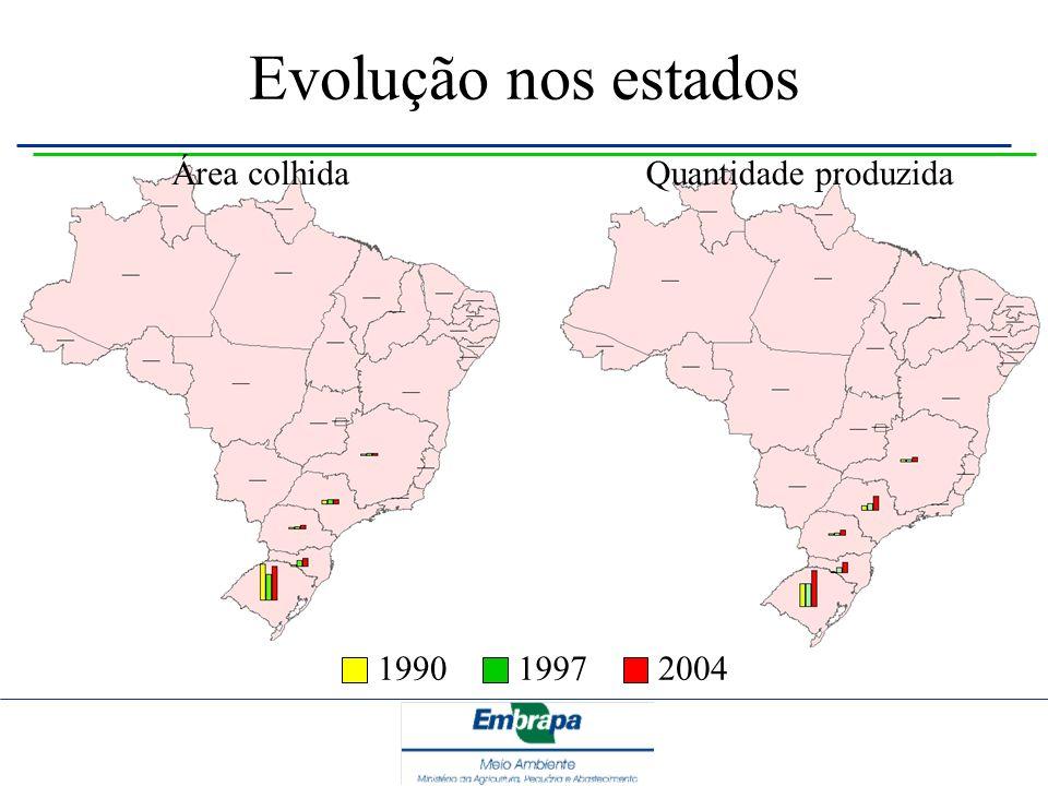 Evolução nos estados 199019972004 Quantidade produzidaÁrea colhida