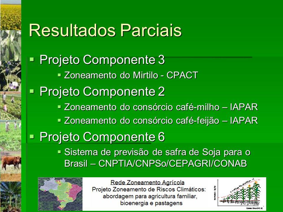 Resultados Parciais Projeto Componente 3 Projeto Componente 3 Zoneamento do Mirtilo - CPACT Zoneamento do Mirtilo - CPACT Projeto Componente 2 Projeto