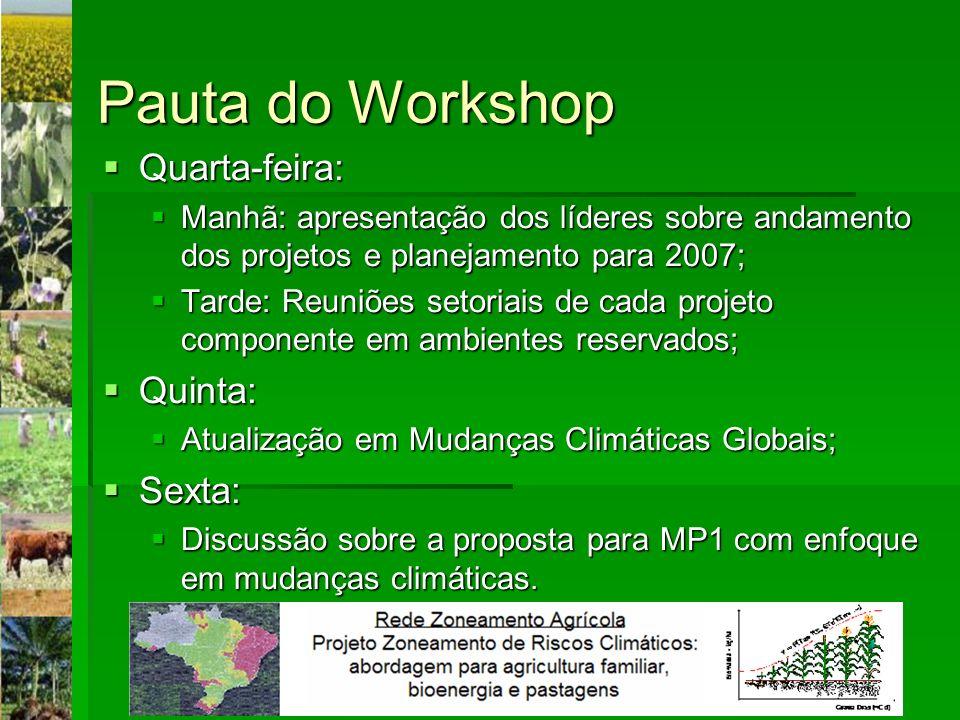 Pauta do Workshop Quarta-feira: Quarta-feira: Manhã: apresentação dos líderes sobre andamento dos projetos e planejamento para 2007; Manhã: apresentaç
