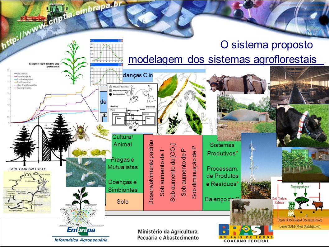 Fronteira de Atuação O sistema proposto modelagem dos sistemas agroflorestais Mudanças Climáticas - Cenários IPCC Análise de Tendências e Monitoramento das Condições Ambientais Cultura/ Animal Pragas e Mutualistas Doenças e Simbiontes Solo Desenvolvimento padrão Sob aumento de T Sob aumento da [CO 2 ] Sob aumento de P Sob diminuição de P Modelagem dos Sistemas AgroFlorestais (parametrização e simulações) Sistemas Produtivos * Processam.
