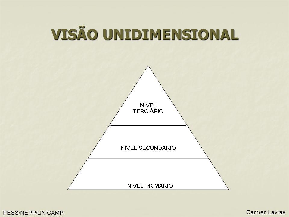 PESS/NEPP/UNICAMP Carmen Lavras VISÃO UNIDIMENSIONAL