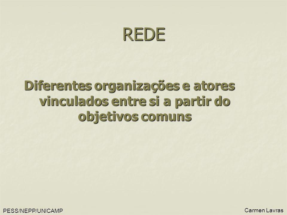 PESS/NEPP/UNICAMP Carmen Lavras REDE Diferentes organizações e atores vinculados entre si a partir do objetivos comuns