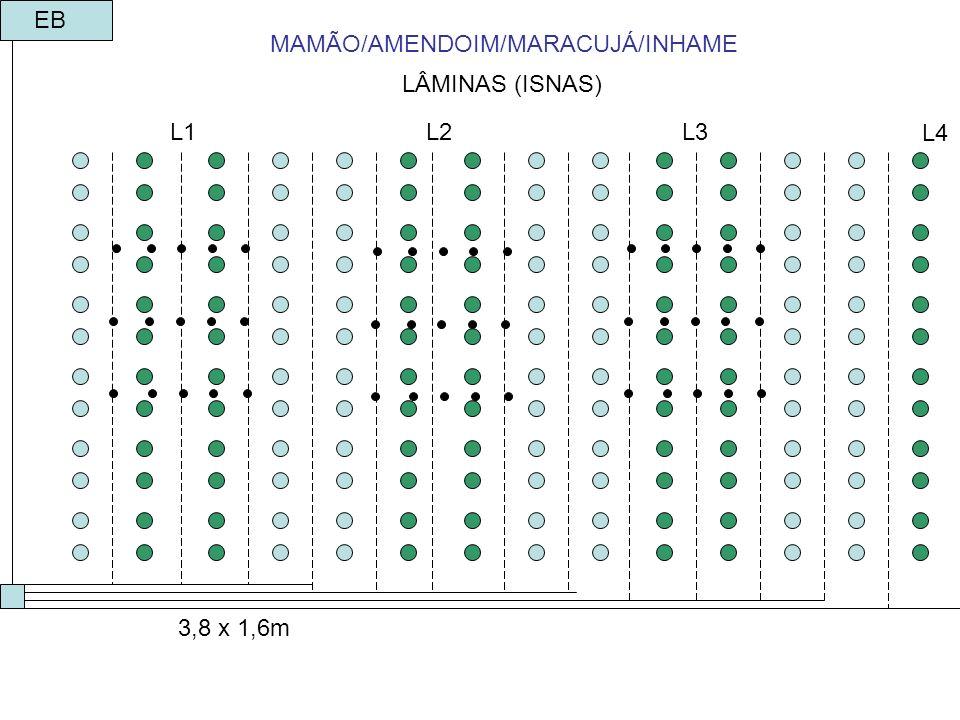 LÂMINAS (ISNAS) 3,8 x 1,6m EB MAMÃO/AMENDOIM/MARACUJÁ/INHAME L1L2L3 L4