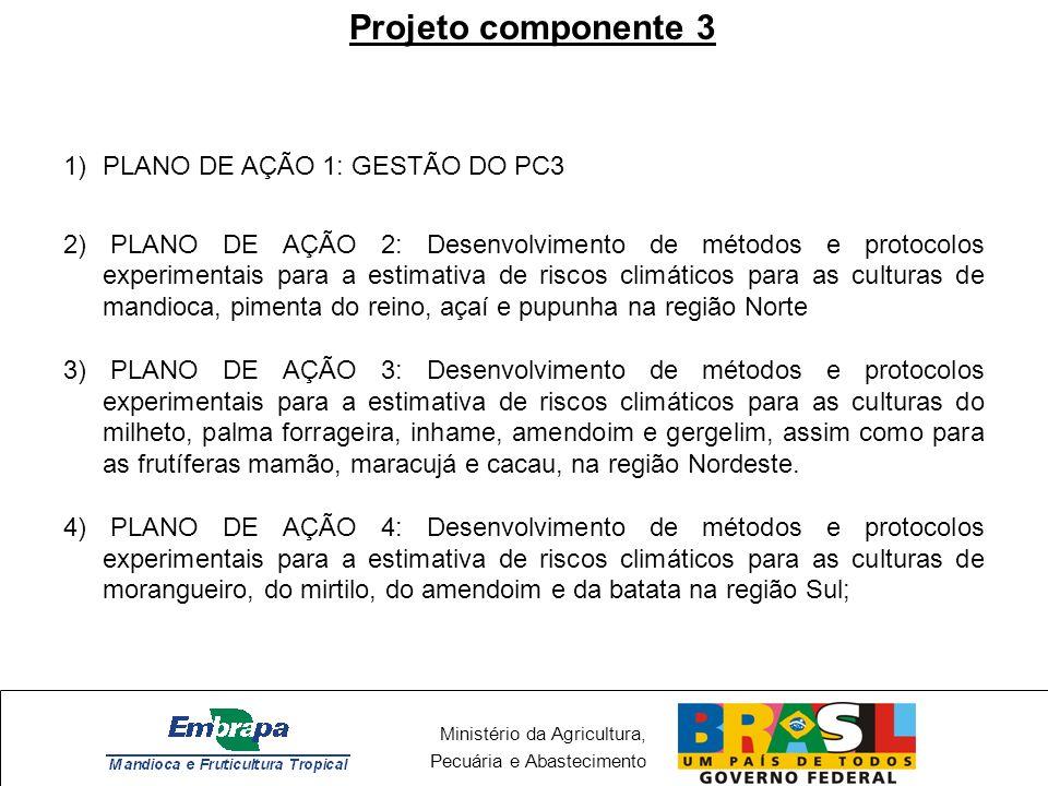 Ministério da Agricultura, Pecuária e Abastecimento Projeto componente 3 1)PLANO DE AÇÃO 1: GESTÃO DO PC3 2) PLANO DE AÇÃO 2: Desenvolvimento de métod