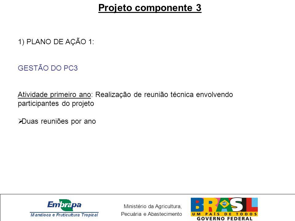 Ministério da Agricultura, Pecuária e Abastecimento Projeto componente 3 1) PLANO DE AÇÃO 1: GESTÃO DO PC3 Atividade primeiro ano: Realização de reuni
