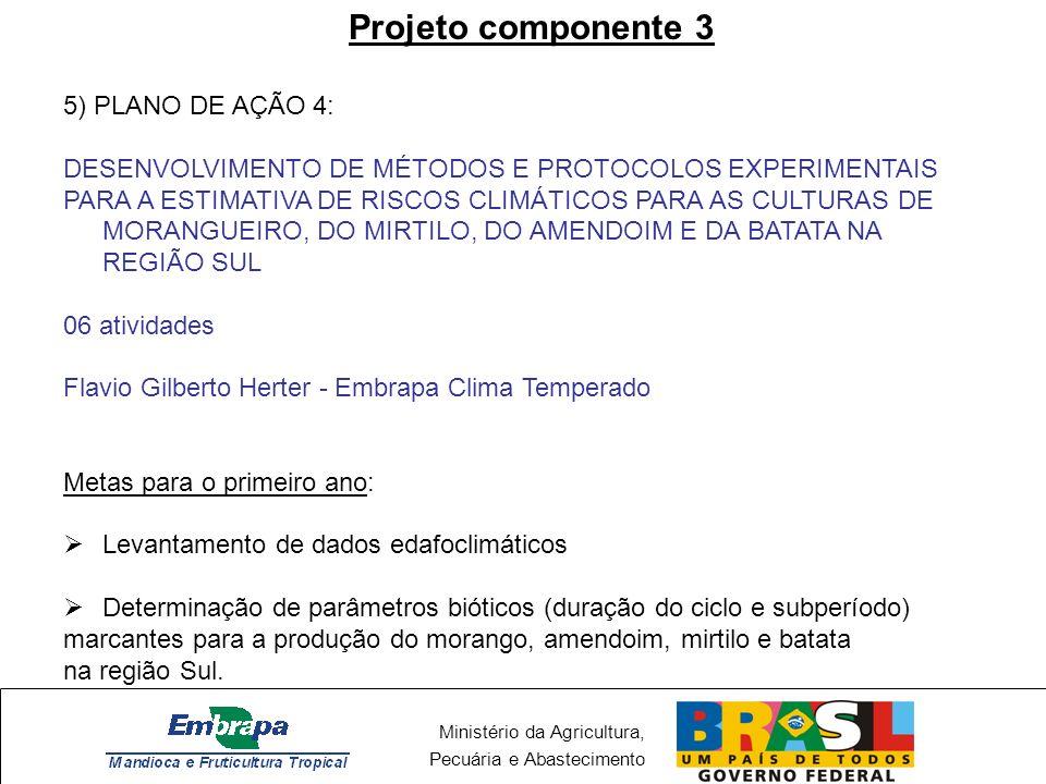 Ministério da Agricultura, Pecuária e Abastecimento Projeto componente 3 - PA3 DESENVOLVIMENTO DE MÉTODOS E PROTOCOLOS EXPERIMENTAIS PARA A ESTIMATIVA DE RISCOS CLIMÁTICOS PARA AS CULTURAS DO MILHETO, PALMA FORRAGEIRA, INHAME, AMENDOIM E GERGELIM, ASSIM COMO PARA AS FRUTÍFERAS MAMÃO, MARACUJÁ E CACAU, NA REGIÃO NORDESTE 11 atividades Mauricio Antonio Coelho Filho – Embrapa Mandioca e Fruticultura Tropical