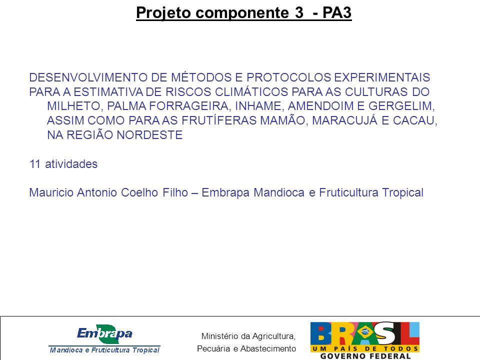 Ministério da Agricultura, Pecuária e Abastecimento Projeto componente 3 - PA3 Experimentos em andamento Amendoim – CNPMF/CPATSA/CNPA Gergelim – CNPA Mandioca - CNPMF Mamão - CNPMF Inhame - CNPMF