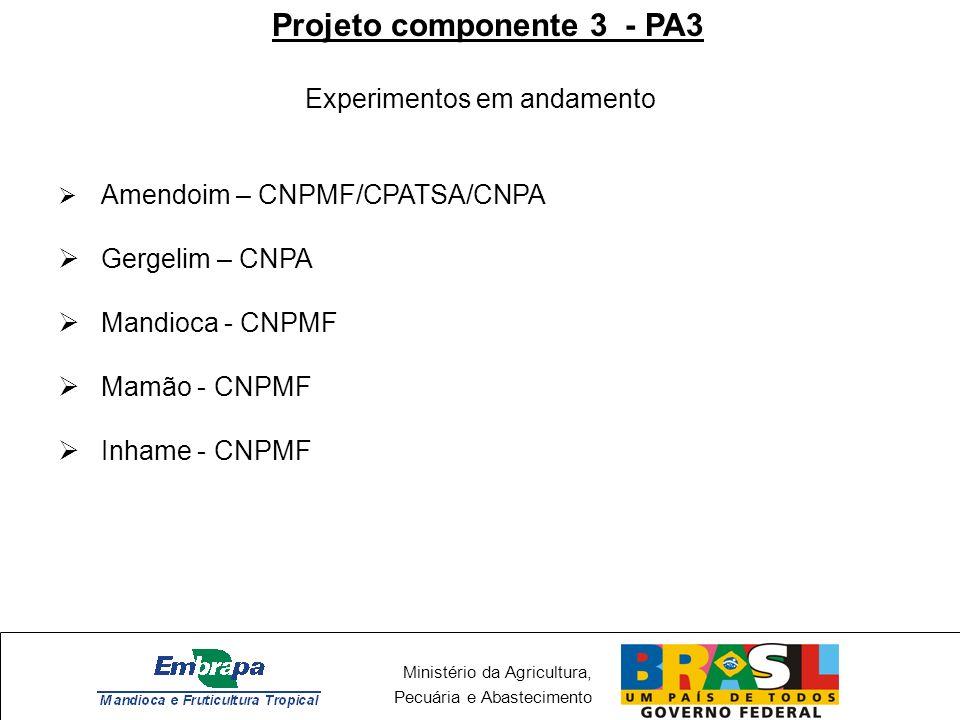 Ministério da Agricultura, Pecuária e Abastecimento Projeto componente 3 - PA3 Experimentos em andamento Amendoim – CNPMF/CPATSA/CNPA Gergelim – CNPA