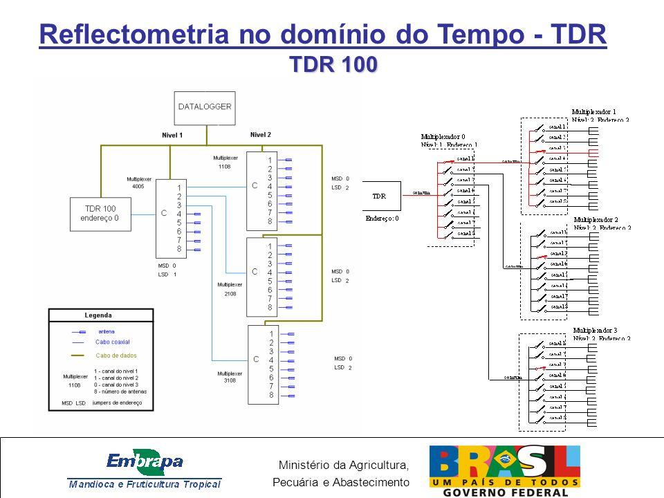 Ministério da Agricultura, Pecuária e Abastecimento Reflectometria no domínio do Tempo - TDR TDR 100