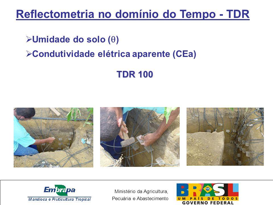 Ministério da Agricultura, Pecuária e Abastecimento Reflectometria no domínio do Tempo - TDR Umidade do solo ( ) Condutividade elétrica aparente (CEa) TDR 100
