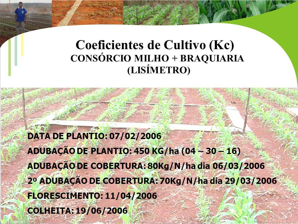 DATA DE PLANTIO: 07/02/2006 ADUBAÇÃO DE PLANTIO: 450 KG/ha (04 – 30 – 16) ADUBAÇÃO DE COBERTURA: 80Kg/N/ha dia 06/03/2006 2º ADUBAÇÃO DE COBERTURA: 70