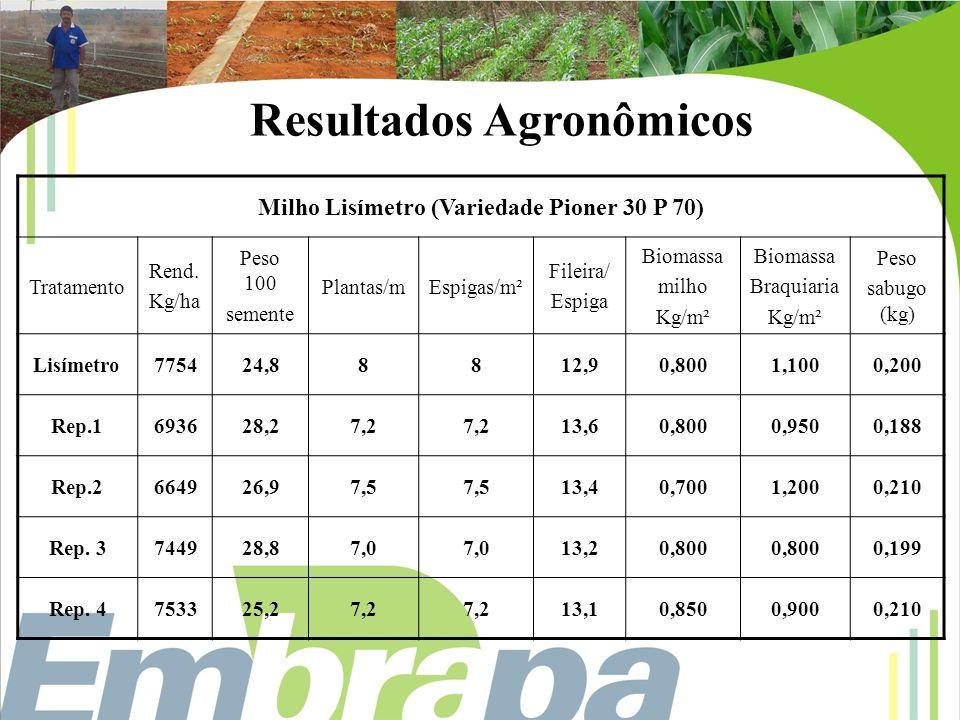 Milho Lisímetro (Variedade Pioner 30 P 70) Tratamento Rend. Kg/ha Peso 100 semente Plantas/mEspigas/m² Fileira/ Espiga Biomassa milho Kg/m² Biomassa B