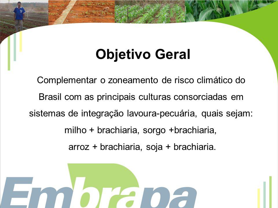 Objetivo Geral Complementar o zoneamento de risco climático do Brasil com as principais culturas consorciadas em sistemas de integração lavoura-pecuár