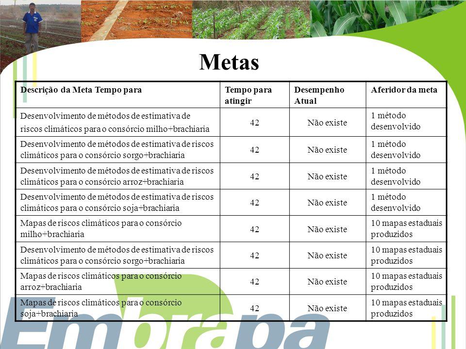 Plano de Ação 1 Gestão do Projeto Componente 05 Início (mês relativo ao início do projeto): 01 Duração (em meses): 42 Fernando Antônio Macena da Silva / Embrapa Cerrados