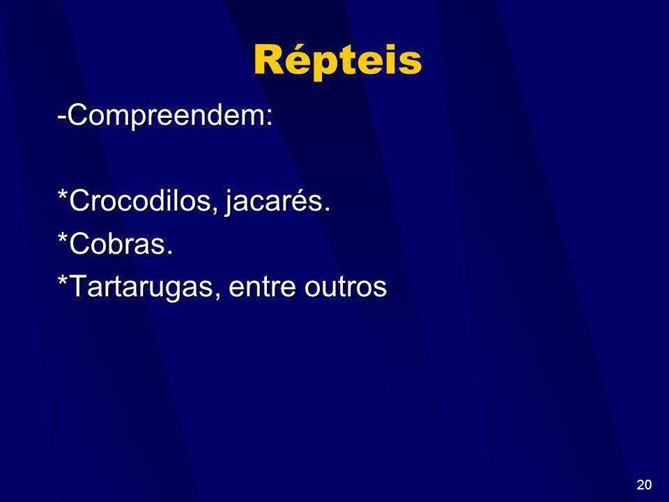 19 Ordens: Anuros sem cauda sapos, rãs e pererecas