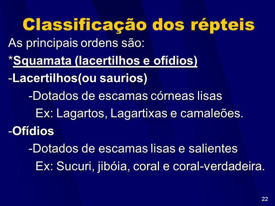 21 Características Gerais -Pele seca e rica em queratina (sem glândulas) -Apresentam: *Escamas(Cobras), placas dérmicas(jacaré), Carapaças(tartarugas)