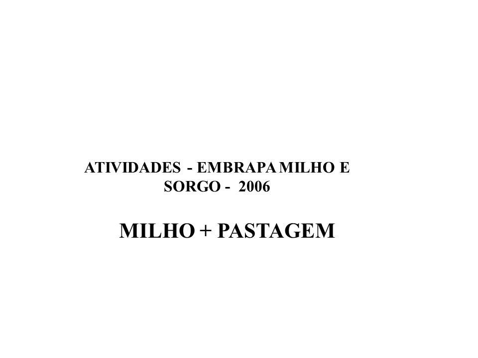 MILHO + PASTAGEM ATIVIDADES - EMBRAPA MILHO E SORGO - 2006