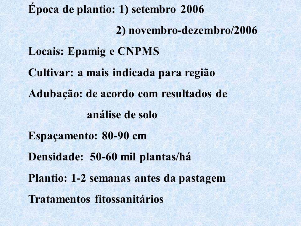 Época de plantio: 1) setembro 2006 2) novembro-dezembro/2006 Locais: Epamig e CNPMS Cultivar: a mais indicada para região Adubação: de acordo com resu