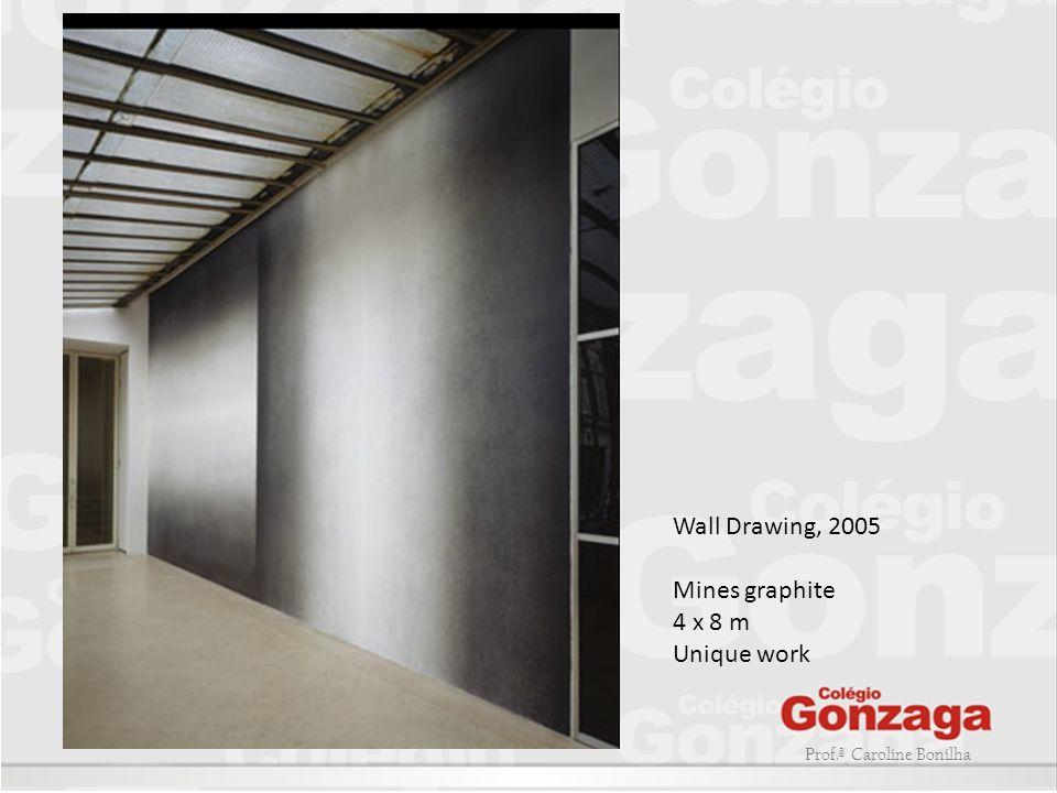 Prof.ª Caroline Bonilha Wall Drawing, 2005 Mines graphite 4 x 8 m Unique work