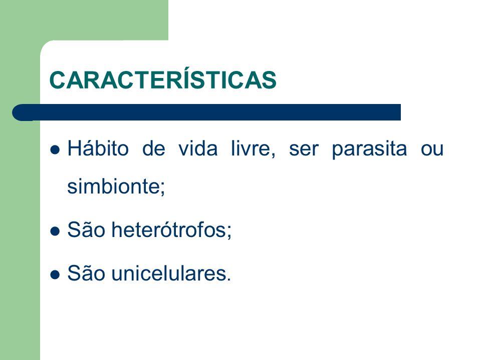 CARACTERÍSTICAS Hábito de vida livre, ser parasita ou simbionte; São heterótrofos; São unicelulares.