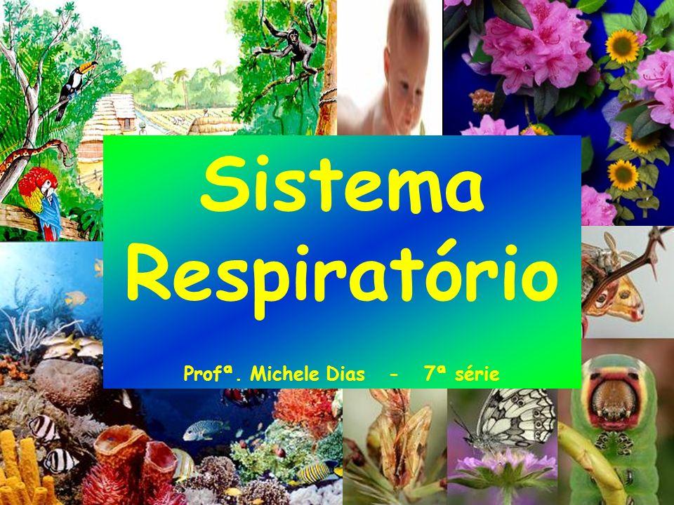 Sistema Respiratório Profª. Michele Dias - 7ª série