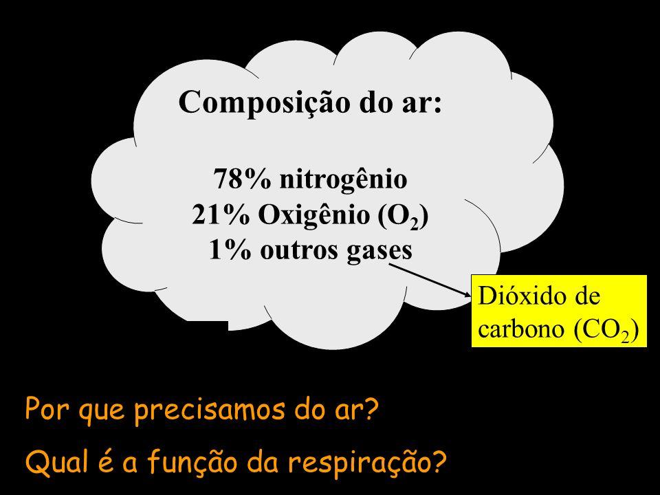 Composição do ar: 78% nitrogênio 21% Oxigênio (O 2 ) 1% outros gases Dióxido de carbono (CO 2 ) Por que precisamos do ar? Qual é a função da respiraçã