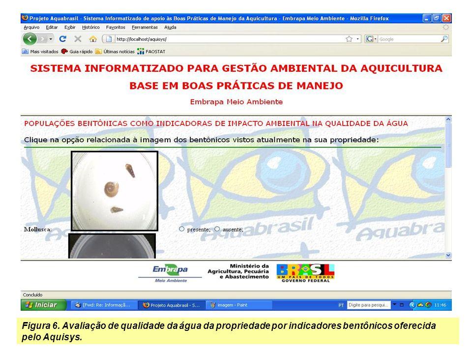 Imagens do Sistema Especialista Desenvolvido em CLIPS para Avaliação Expedita BPMs