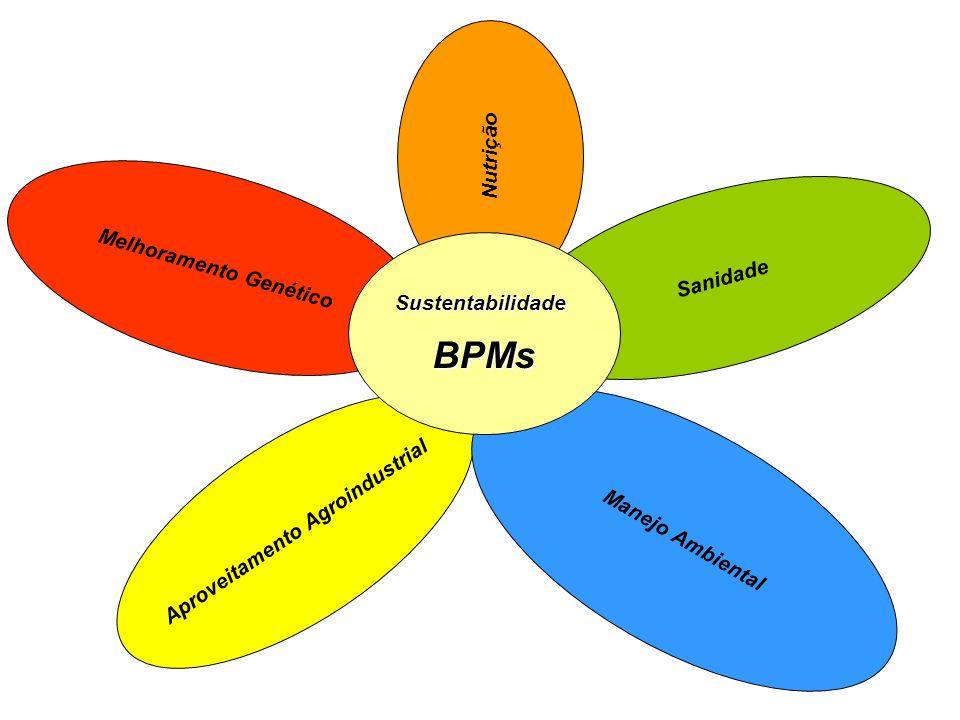 Melhoramento Genético Nutrição Aproveitamento Agroindustrial Manejo Ambiental Sanidade SustentabilidadeBPMs