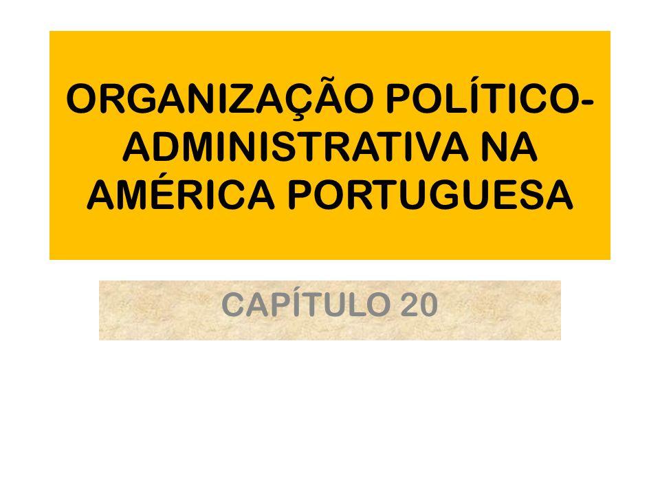 ORGANIZAÇÃO POLÍTICO- ADMINISTRATIVA NA AMÉRICA PORTUGUESA CAPÍTULO 20