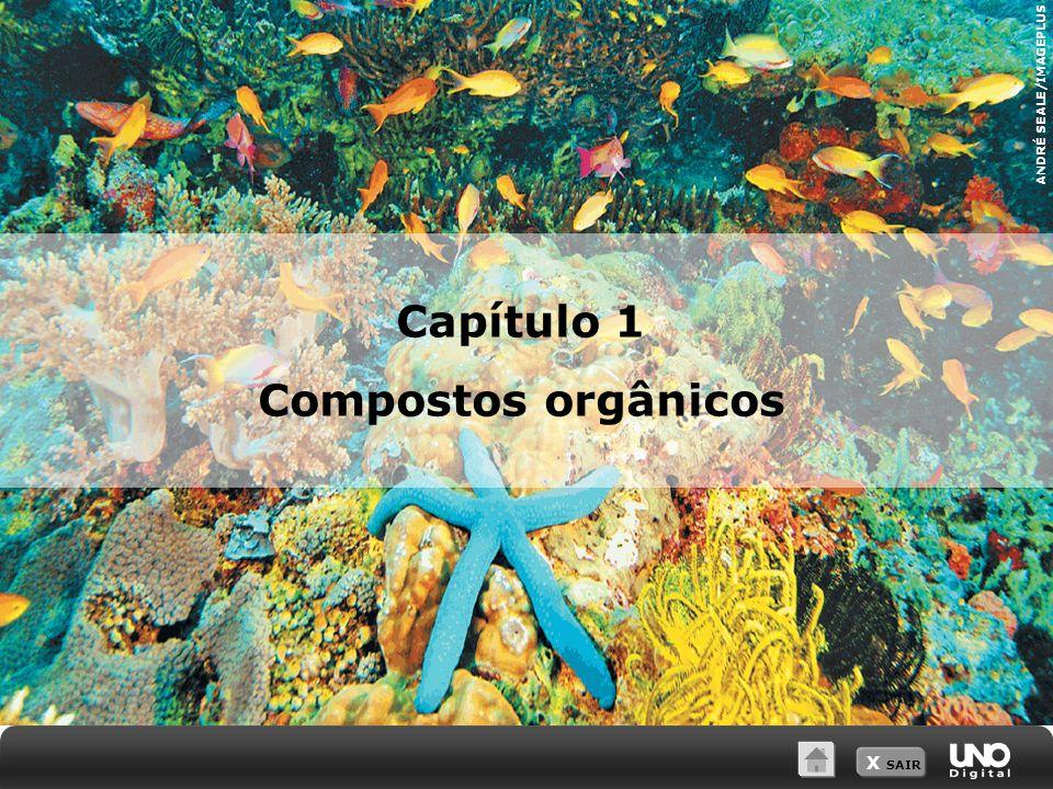 X SAIR ANDRÉ SEALE/IMAGEPLUS Capítulo 1 Compostos orgânicos