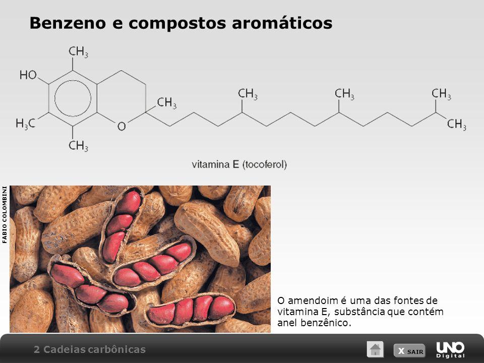 X SAIR Benzeno e compostos aromáticos O amendoim é uma das fontes de vitamina E, substância que contém anel benzênico. 2 Cadeias carbônicas FABIO COLO