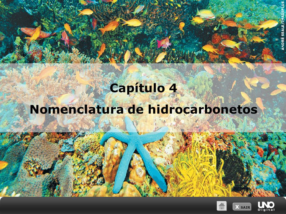 X SAIR ANDRÉ SEALE/IMAGEPLUS Capítulo 4 Nomenclatura de hidrocarbonetos