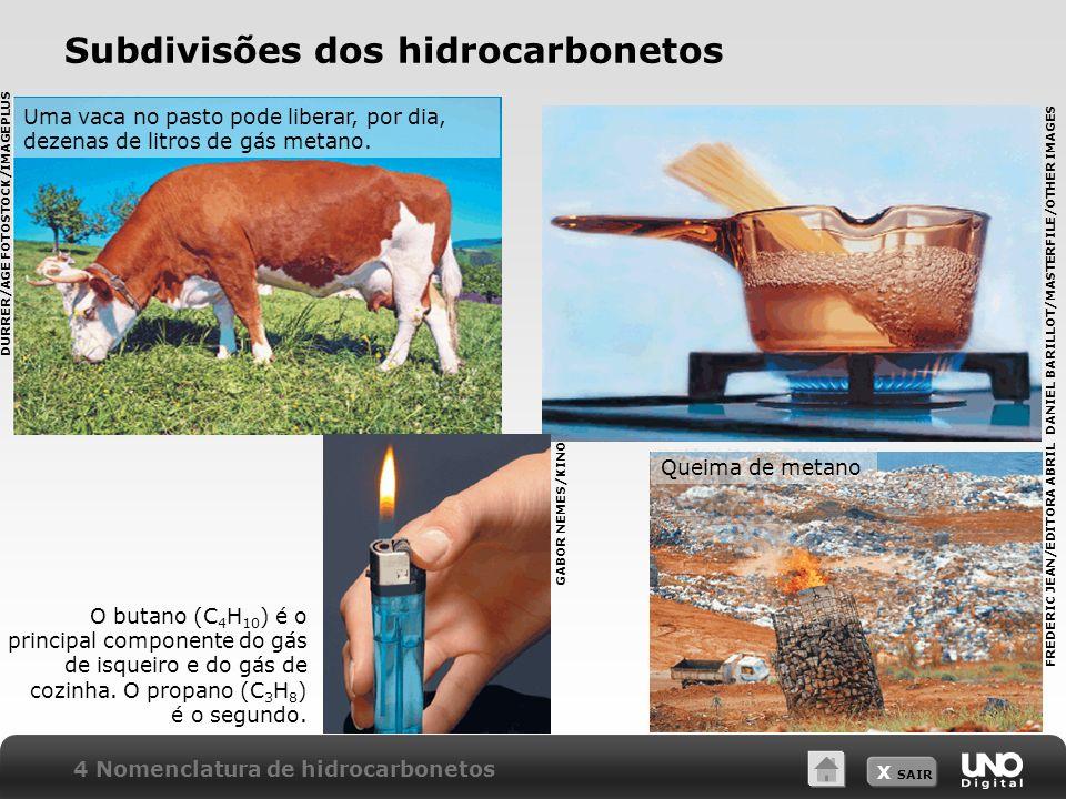 X SAIR Subdivisões dos hidrocarbonetos Uma vaca no pasto pode liberar, por dia, dezenas de litros de gás metano. Queima de metano O butano (C 4 H 10 )