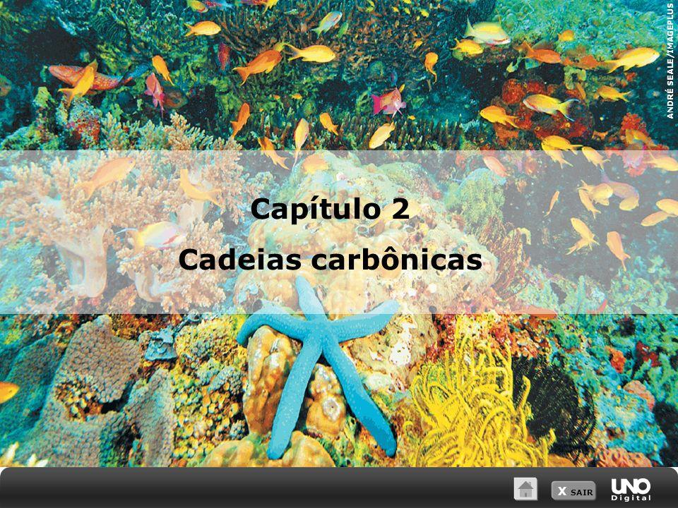X SAIR ANDRÉ SEALE/IMAGEPLUS Capítulo 2 Cadeias carbônicas