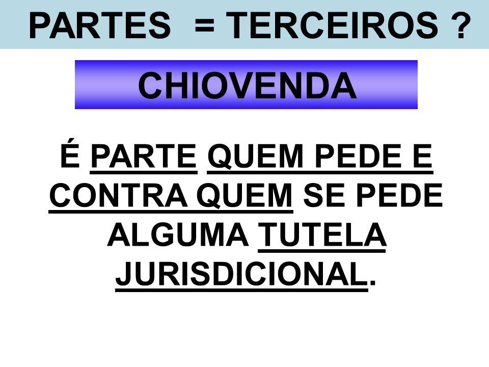 LITISCONSÓRCIO CRÍTICAS AO ART.