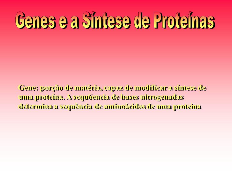 Gene: porção de matéria, capaz de modificar a síntese de uma proteína. A sequ6encia de bases nitrogenadas determina a sequência de aminoácidos de uma
