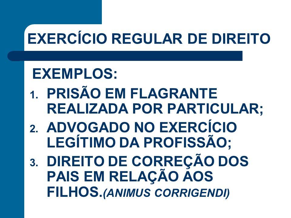 EXERCÍCIO REGULAR DE DIREITO 1. PRISÃO EM FLAGRANTE REALIZADA POR PARTICULAR; 2. ADVOGADO NO EXERCÍCIO LEGÍTIMO DA PROFISSÃO; 3. DIREITO DE CORREÇÃO D