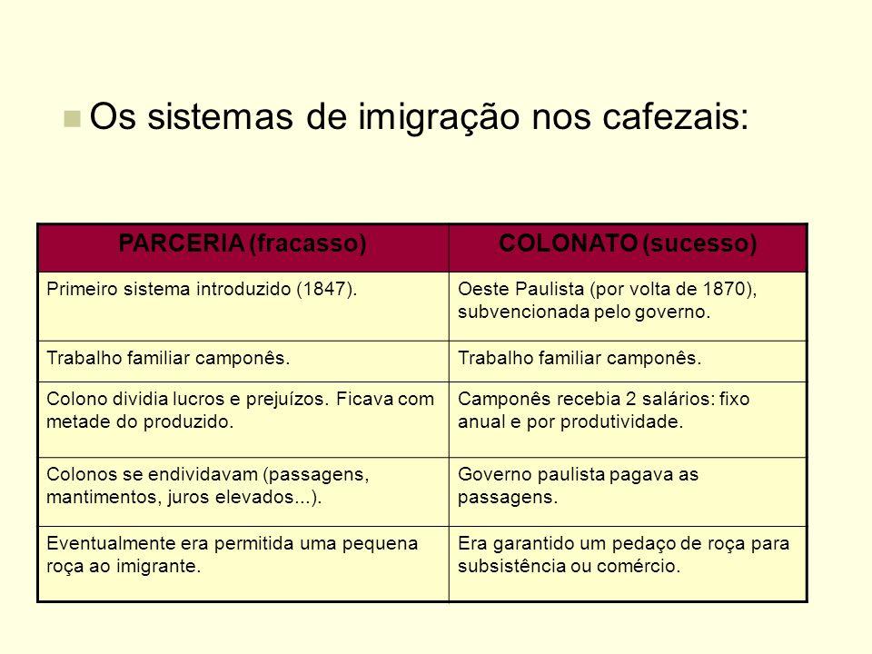 Os sistemas de imigração nos cafezais: PARCERIA (fracasso)COLONATO (sucesso) Primeiro sistema introduzido (1847).Oeste Paulista (por volta de 1870), s