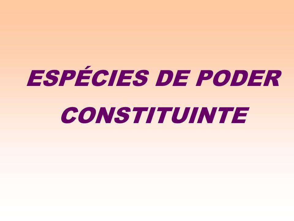 ESPÉCIES DE PODER CONSTITUINTE