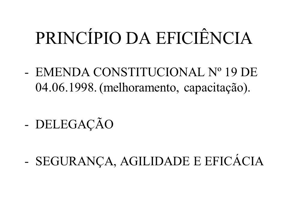 PRINCÍPIO DA EFICIÊNCIA -EMENDA CONSTITUCIONAL Nº 19 DE 04.06.1998. (melhoramento, capacitação). -DELEGAÇÃO -SEGURANÇA, AGILIDADE E EFICÁCIA